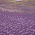Photos: 雲海の果て-01