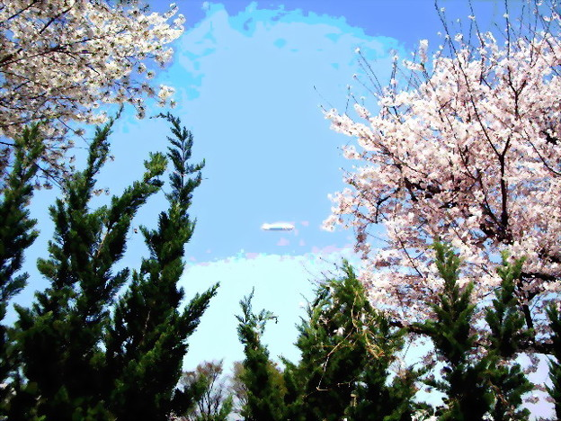 Photos: 桜と飛行船-02