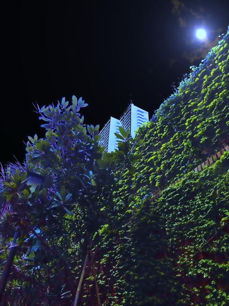 metropolis_新宿-08a