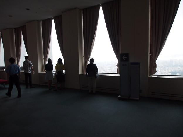 東郷青児記念損保ジャパン日本興亜美術館