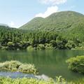 Photos: お玉ヶ池