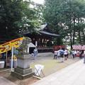 中野氷川神社大祭