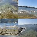 写真: 鯛ノ浦海