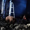 Photos: 劇団新人類人猿 特別公演『制御不能』11