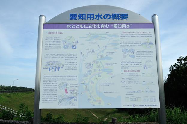 DSC_0531 東郷調整池(愛知池)その11