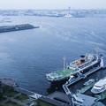Photos: 横浜港