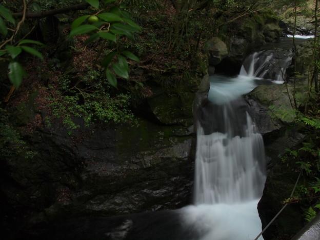 写真: P6201182