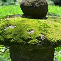 苔むす石塔