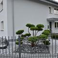 写真: 日本趣味のお宅