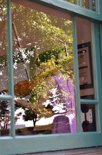 窓辺の響き