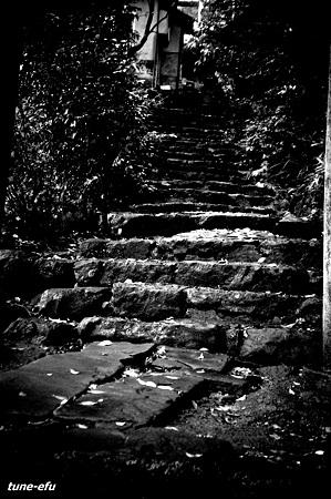 階段に秋の風情