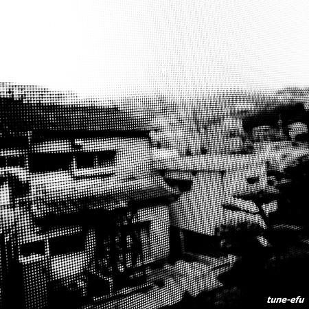 霧の朝・・