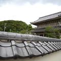 Photos: 鎌倉 光明寺