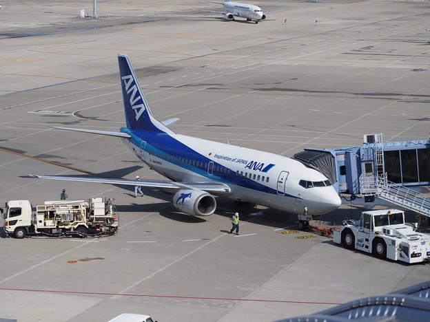 Photos: ANAウィングス旭川便B737-500スーパードルフィン
