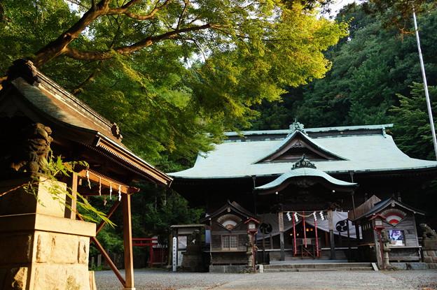 湯本 温泉神社 2