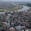 Photos: 江戸川の蛇行