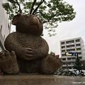 Photos: 2015年6月13日、名古屋市