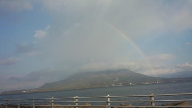 与次郎の散歩風景 桜島と虹