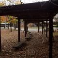 さかな公園のパーゴラ