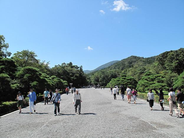 写真: IMG_9619 伊勢神宮