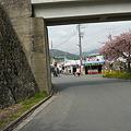 写真: P1040734