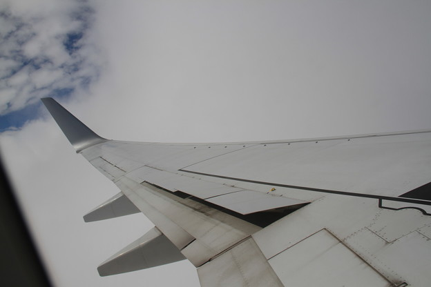 JAL Boeing 737-800 主翼 -5-