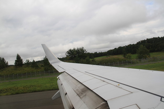 JAL Boeing 737-800 主翼 -9-