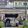 Photos: 紫陽花が咲く駅