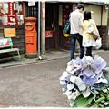 路地裏の紫陽花