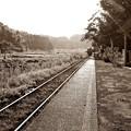 Photos: 列車の音色