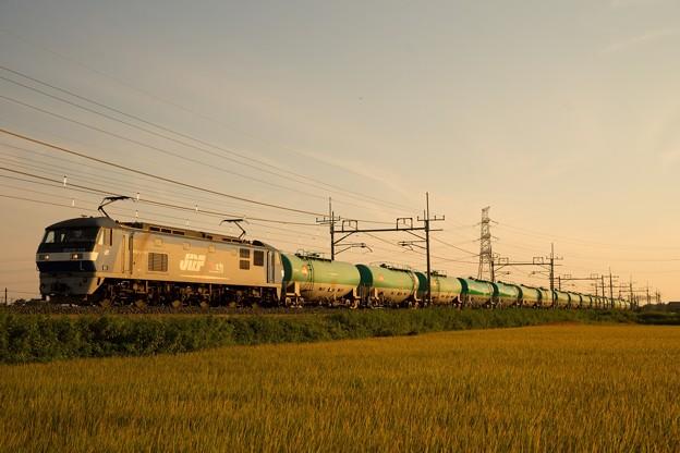 EF210-119牽引貨物@ワシクリ黒小屋踏切