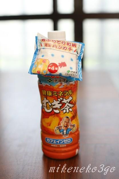 Photos: 麦茶1
