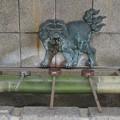 Photos: 難波八坂神社P5310908