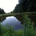 Photos: U池下流池
