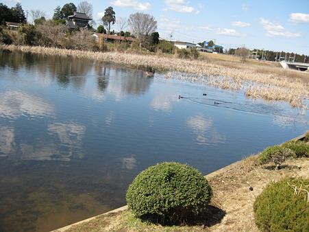北山池 (1)
