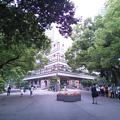 写真: hiibya