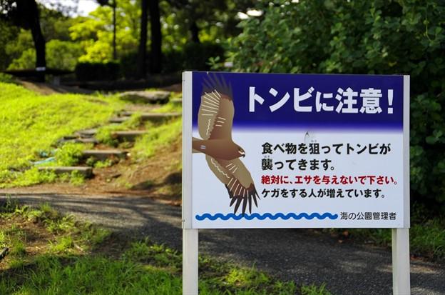 2015晩夏06八景島・海の公園「注意看板」