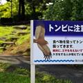 Photos: 2015晩夏06八景島・海の公園「注意看板」