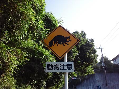 110714 野津田