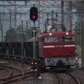 Photos: 水戸工臨 工6383レ EF81 80牽引 (2)