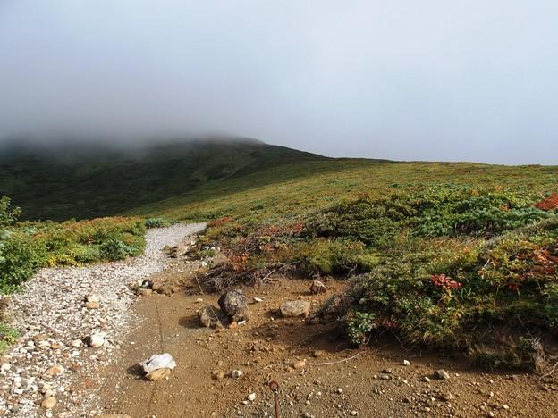 栗駒山が見えず…