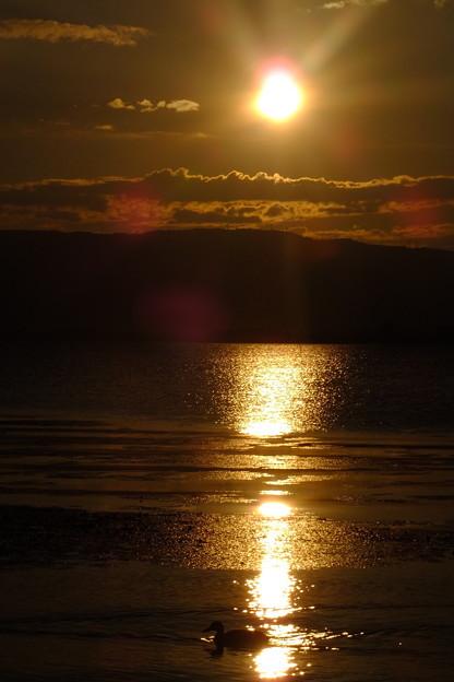 世界中に太陽の光が届くといいな     かものシルエット