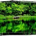 Photos: 鏡