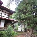 Photos: 宗徳寺にて