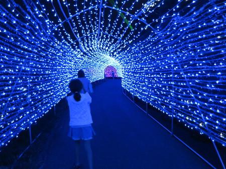 アパリゾート上越妙高 イルミネーション2015 虹龍の光の大トンネル2