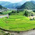 Photos: 扇島