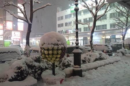 新潟駅前の様子。