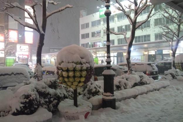 写真: 新潟駅前の様子。