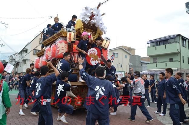 Photos: DSC_0282