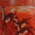 福島県飯舘村の山津見神社にあったオオカミの天井絵=2013年12月(和歌山大特任助授の豪州人写真家サイモン・ワーンさん撮影)